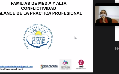 Seminario Coordinación de la Parentalidad, Fundación Canaria, España